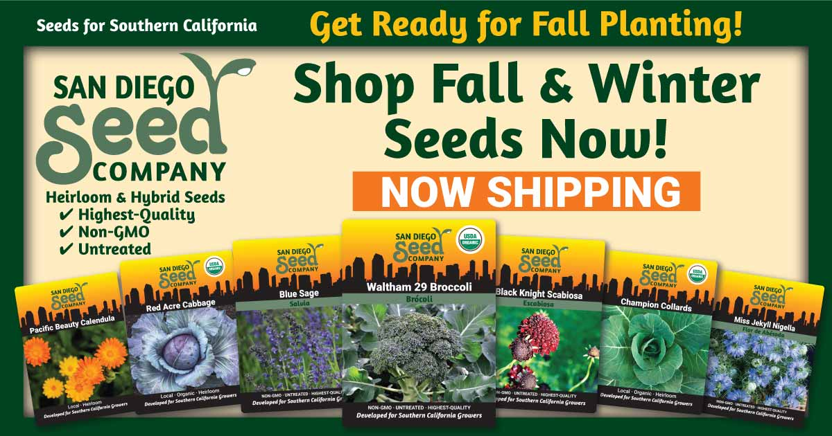 Fall and Winter Planting