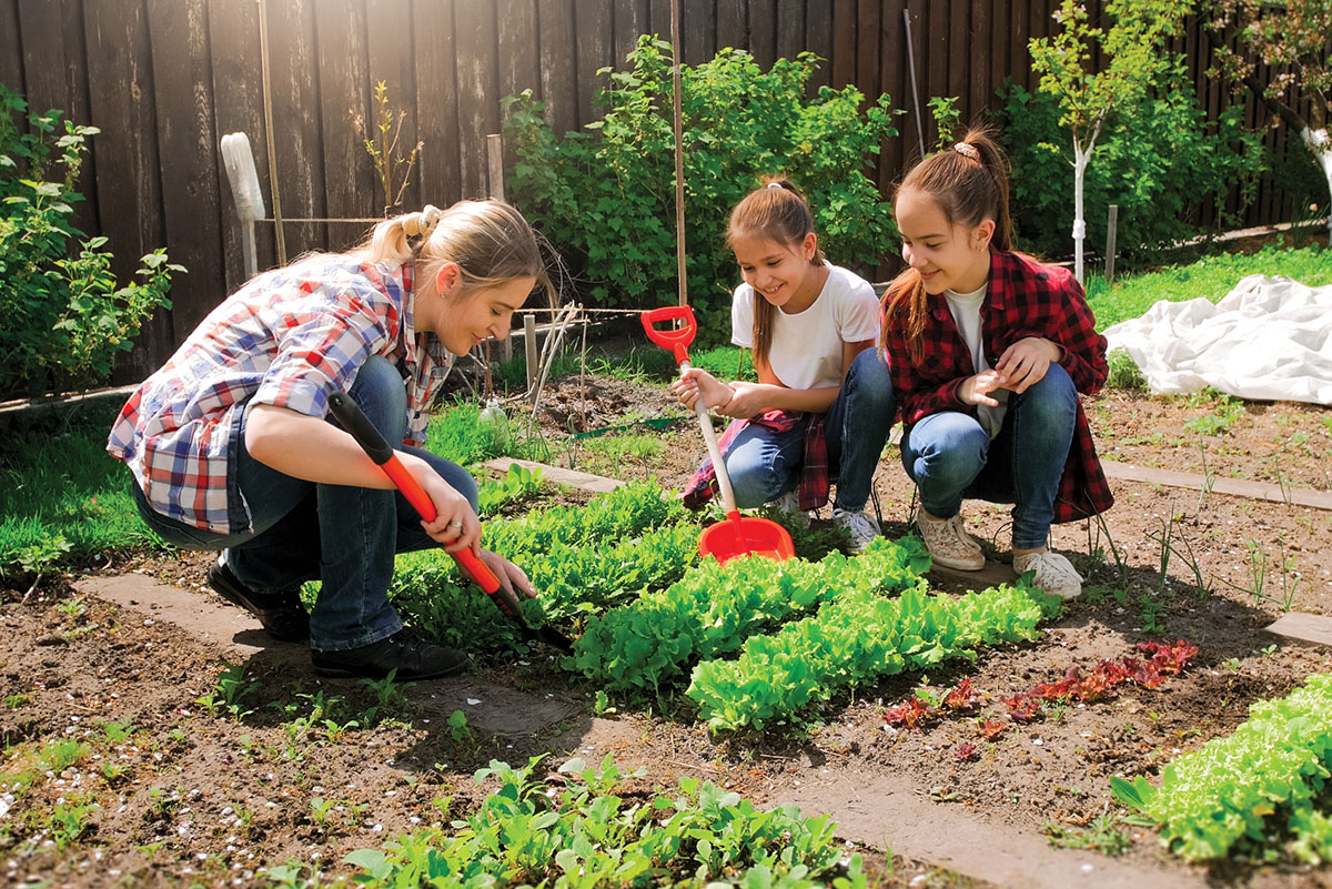 "Featured image for ""How to Start a Vegetable Garden"""