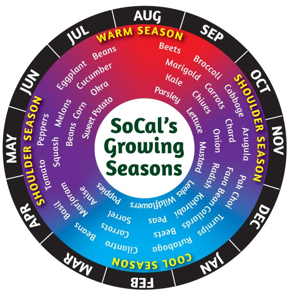 Growing Wheel- Seasons