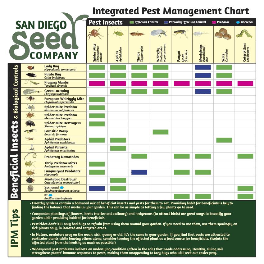 Integrated Pest Management Chart