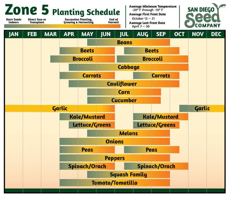 Zone 5 Planting Calander