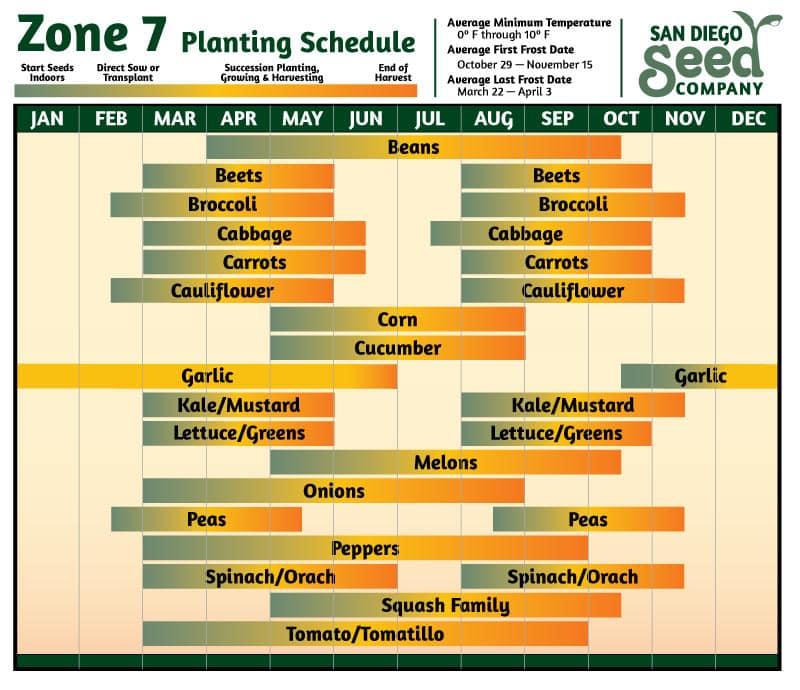 Zone 7 Planting Calendar