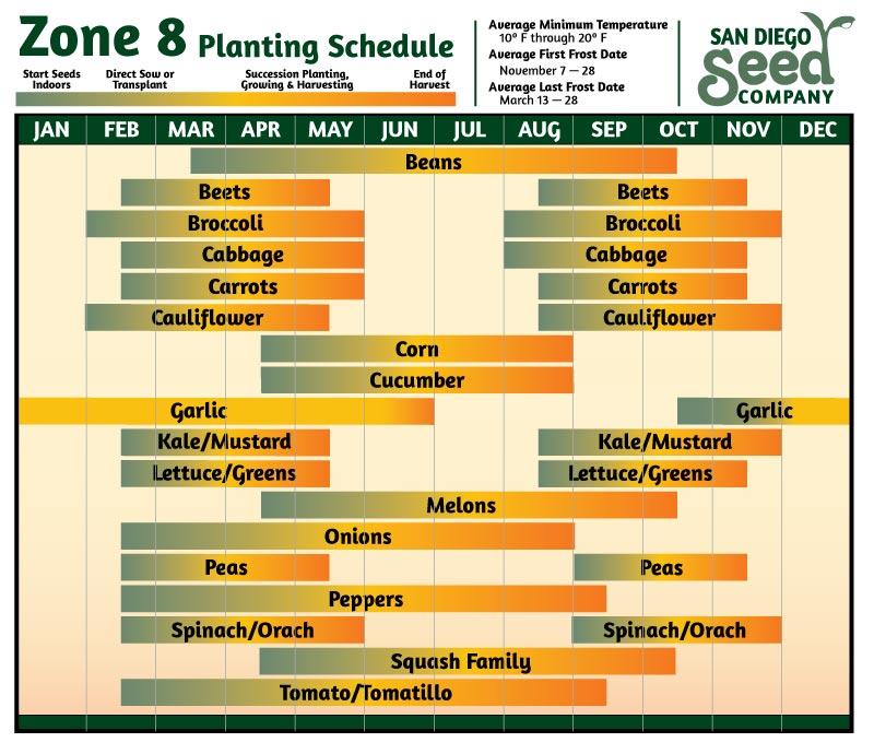 Zone 8 Planting Calendar