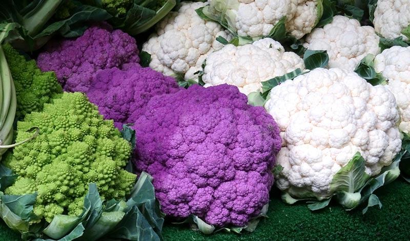 growing cauliflower-varieties